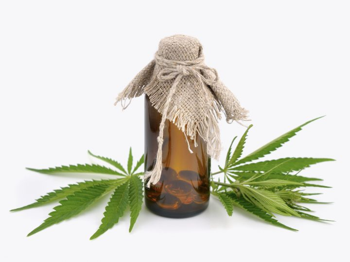 Where to Buy CBD Oil in Miami?